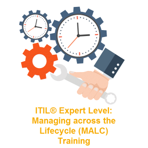 Expert Level – Managing across the Lifecycle (MALC) Training